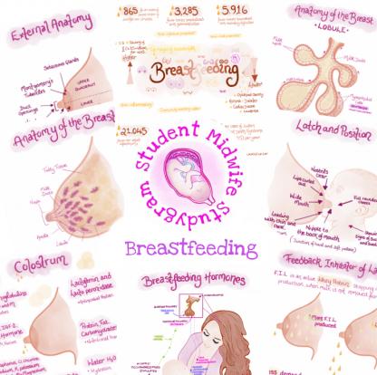 Breastfeeding Flashcards