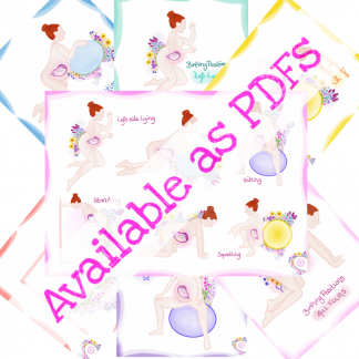 Birth Positions Bundle