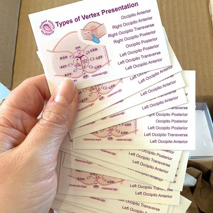 Bundle of Vertex Presentation Types being held