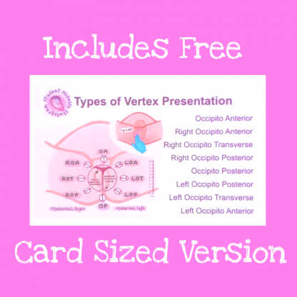 Business card sized Vertex Presentations