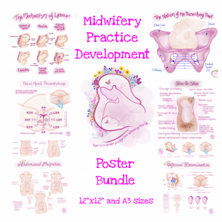 Midwifery Practice Development Poster Bundle