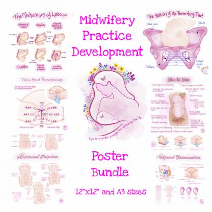 Midwifery Practice Development Poster Bundle
