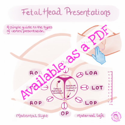 Vertex Presentations PDF