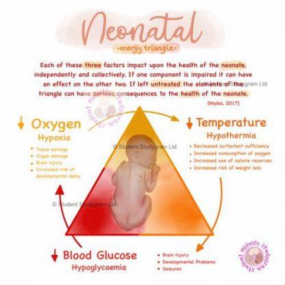 Neonatal Energy Triangle Thumbnail
